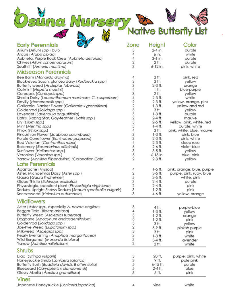 Osuna Nursery Native Butterfly List