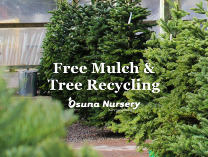Free Mulch & Tree Recycling