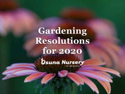 Gardening Resolutions for 2020