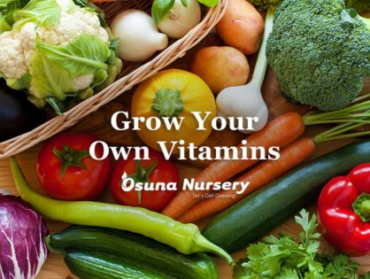 Grow your own Vitamins