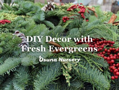 DIY Decor with Fresh Evergreens
