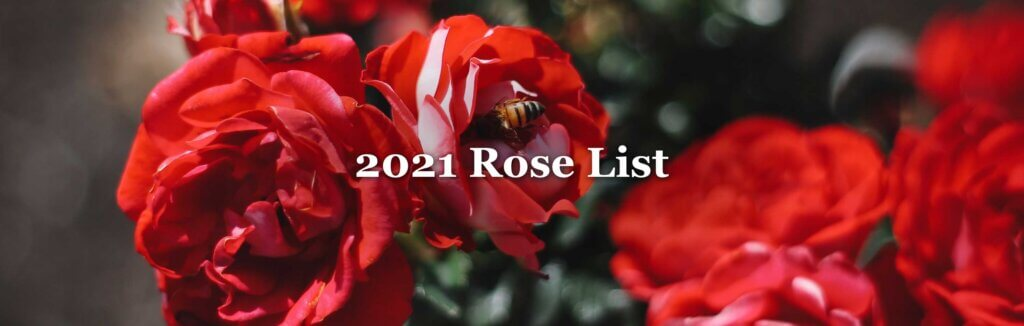 Check out our 2021 rose list! Roses are available beginning Saturday, April 24th.